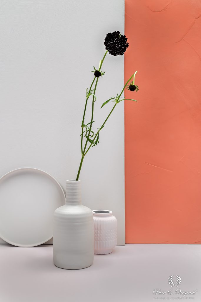 Canvas, vase and plate: Licetto Calm 